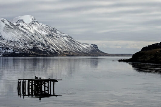 Westfjords Iceland Winter Tour